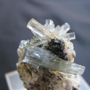 aqua2 (1)